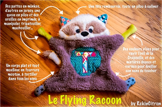 Le flying Racoon